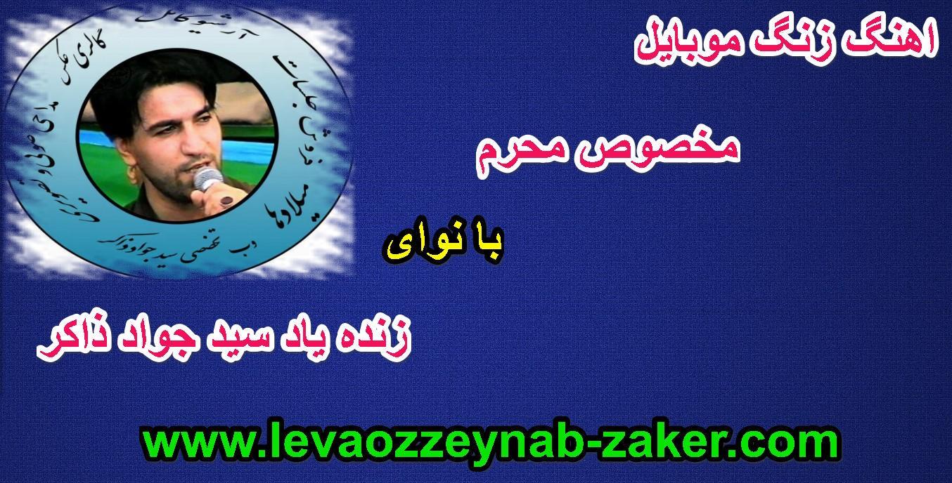 http://s9.picofile.com/file/8269448026/www_levaozzeynab_zaker_1_.jpg