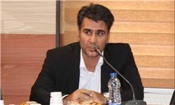 تشکیل کنسرسیوم فرش در استان زنجان