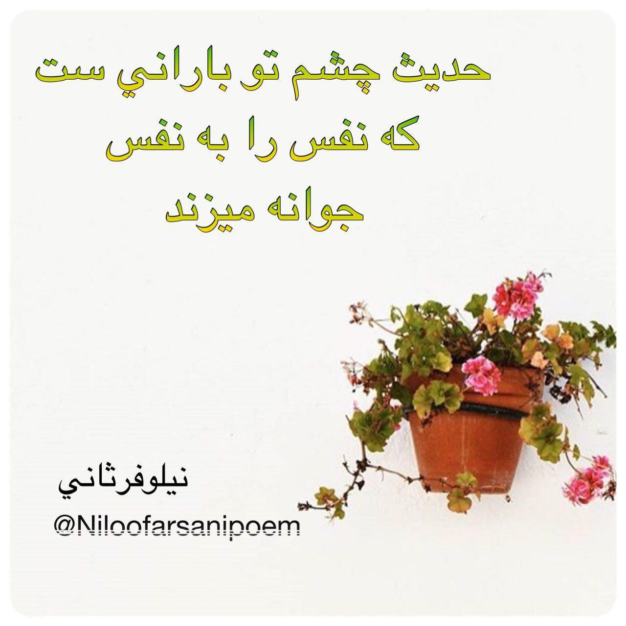 http://s9.picofile.com/file/8270616918/photo_2016_10_12_13_48_39.jpg