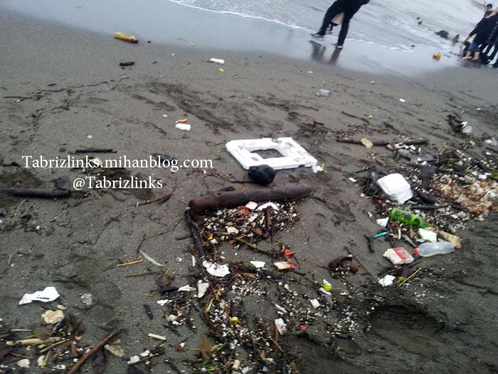 ساحل آلوده