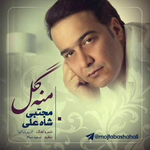 http://s9.picofile.com/file/8272842268/2mojtaba_shah_ali_mana_gal.jpg