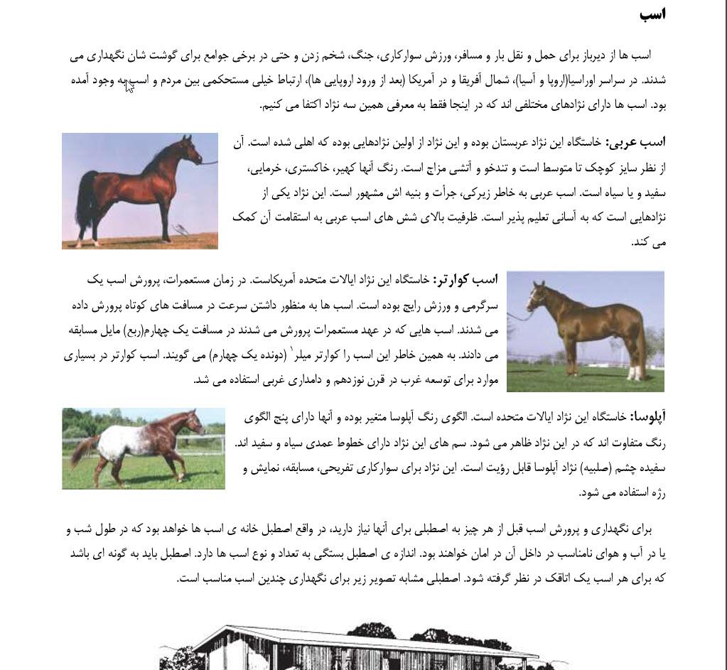 دانلود رایگان کتاب آموزش نگهداری و پرورش حیوانات اهلی در خانه و حیاط pdf