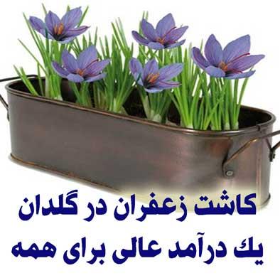 http://s9.picofile.com/file/8273206392/002.jpg