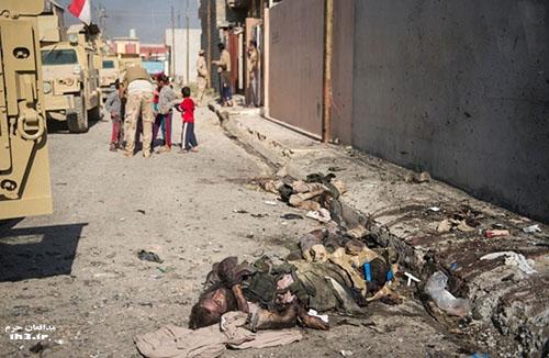 اجساد داعشی ها در موصل