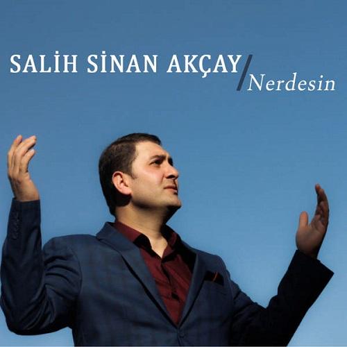 دانلود آهنگ جدید Salih Sinan Akcay بنام Nerdesin