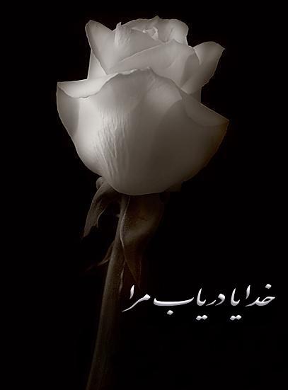 حسین جوادی