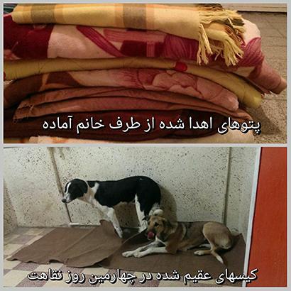 اهدا پتو به نقاهتگاه مهر