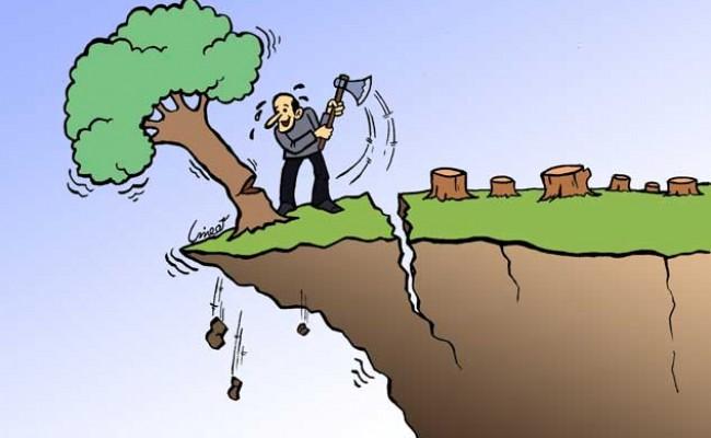 محیط زیست با مصالح زیستی