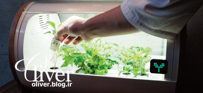 فناوری ژاپن برای رشد گیاه داخل خونه