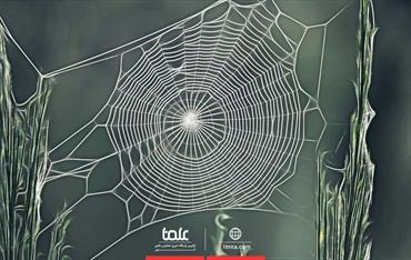 تار عنکبوت در معماری و سازه ها چادر ها