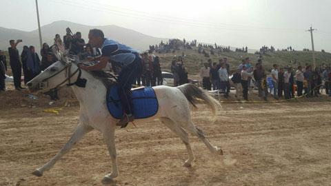 برگزاری مسابقات اسب سواری در شهرستان ممسنی