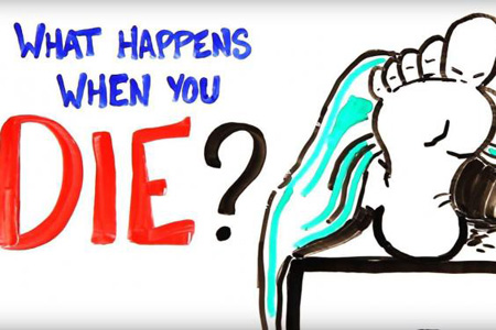 بعد از مرگ چه اتفاقی برای بدن انسان می افتد؟