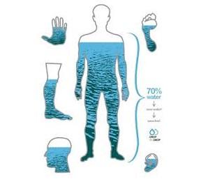 شناسایی میزان آب بدن انسان