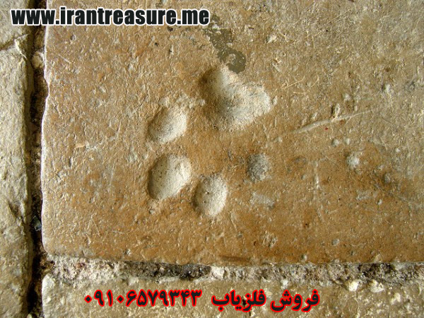 kai952 نشان پای سگ در گنج یابی