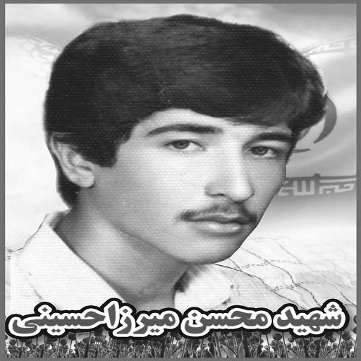 محسن میرزاحسینی
