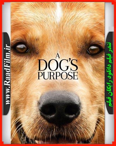 دانلود رایگان فیلم A Dogs Purpose 2017
