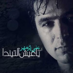 آهنگ نه ایستیرسن جانیمدان از علی پرمهر