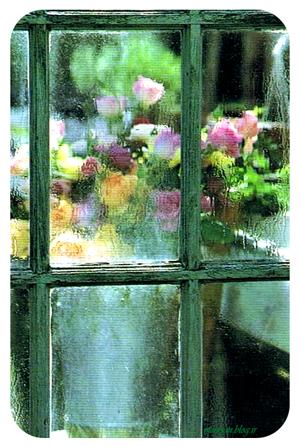 پنجره002.png (300×447)
