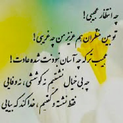 http://s9.picofile.com/file/8294712334/em8me_zam8n_nayaa_nayaa_gole_narges_3.jpg