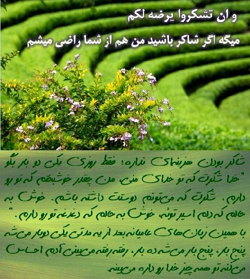 http://s9.picofile.com/file/8295089068/xodaa_dar_jostejuye_2.jpg