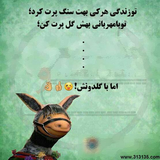 دیوونه شو - آهنگ شاد علی مولایی
