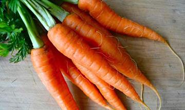 یکی از مهمترین خواص هویج ضد سرطان بودن آن است !