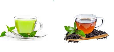 چای سیاه یا چای سبز؟