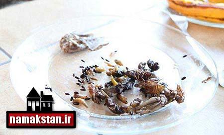 [عکس: Beetles_and_grasshoppers_eat_a_Teacher_photos_5.jpg]