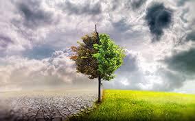 10 راه برای تغییر طرز تفکر و دگرگون کردن زندگی