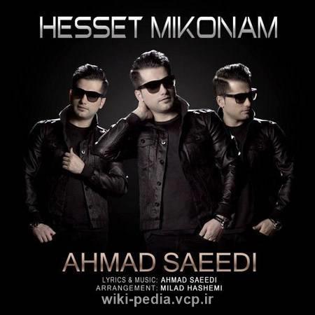 دانلود آهنگ زیبای حست میکنم از احمد سعیدی