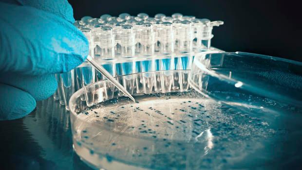 بیومارکرها و راه های تشخیصی آن در بیوتکنولوژی پزشکی