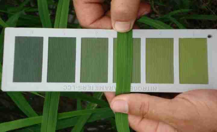 دستگاه نمودار برگ برای تشخیص کمبود عناصر در مزرعه