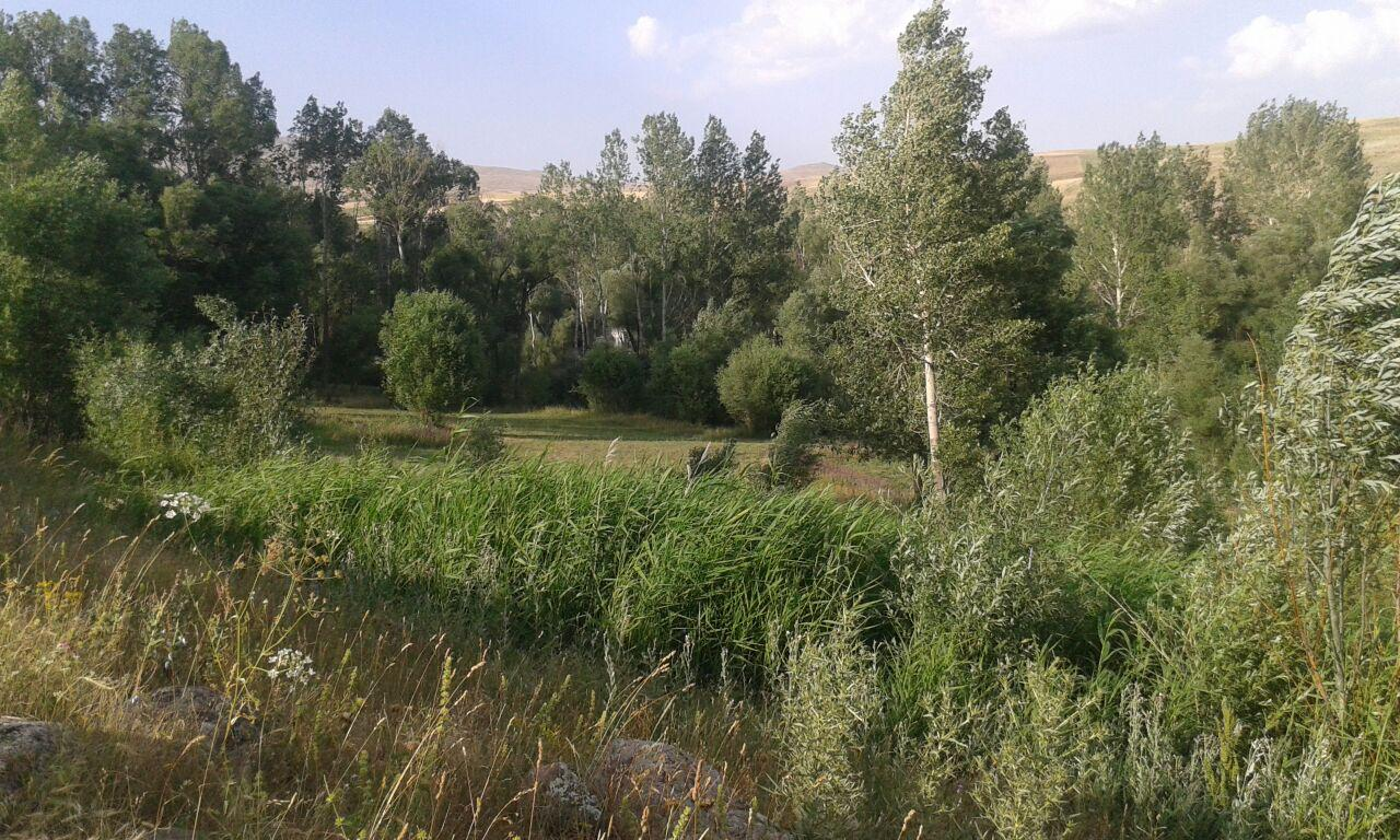 روستای اویلق