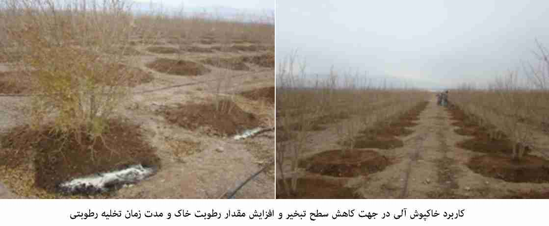 کاربرد خاکپوش آلی در جهت کاهش سطح تبخیر و افزایش مقدار رطوبت خاک و مدت زمان تخلیه رطوبتی