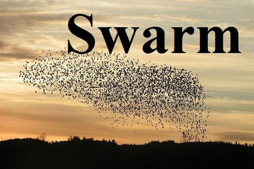 پرواز دسته جمعی – Swarm – آموزش لغات کتاب ۵٠۴ – English Vocabulary – کدینگ لغات ۵٠۴