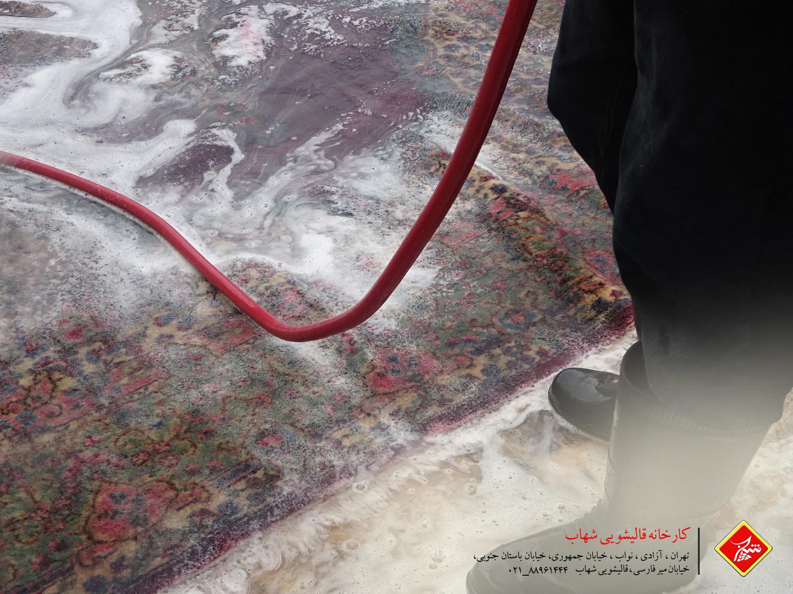 قالیشویی شهاب 24