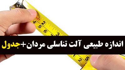 افزایش سایز آلت تناسلی مردان,روش های افزایش سایز آلت تناسلی مردان,آلت تناسلی مردان