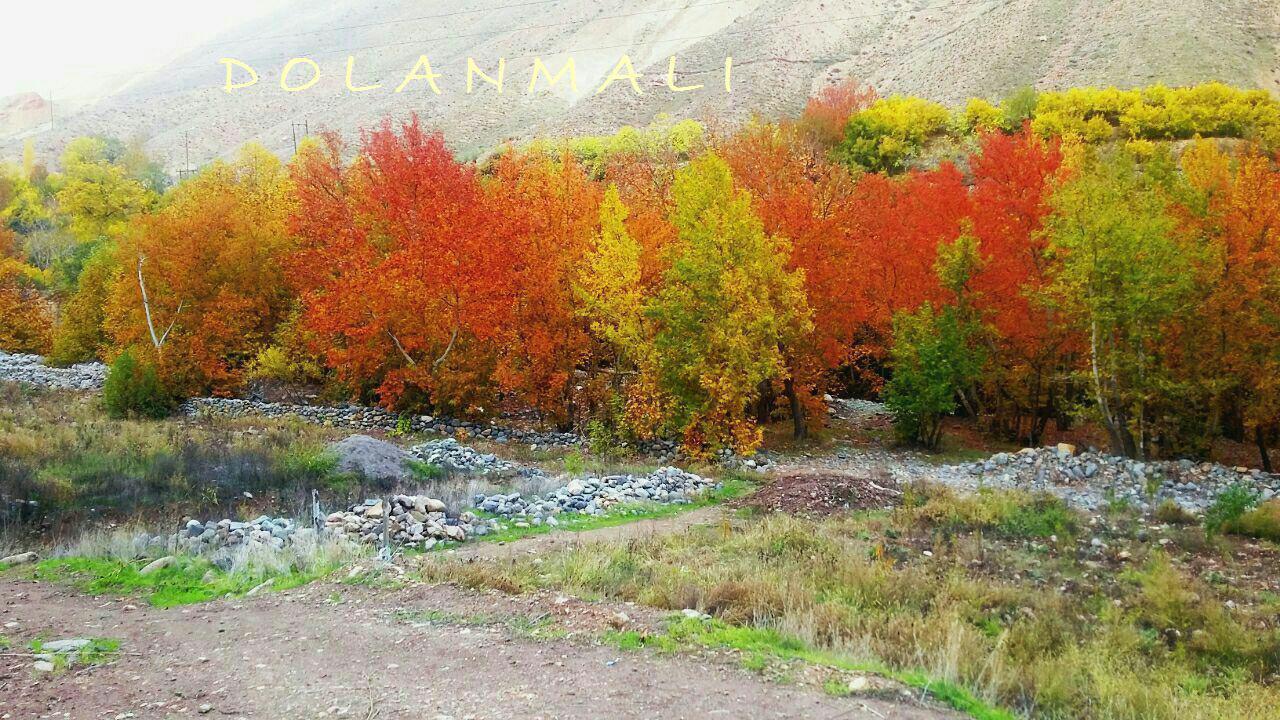 پاییز زنجان