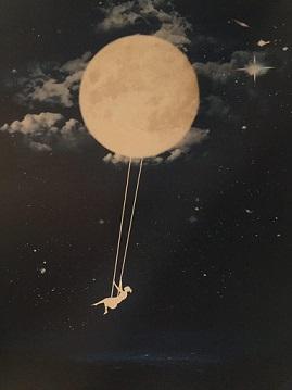 آسمان ستاره باران است