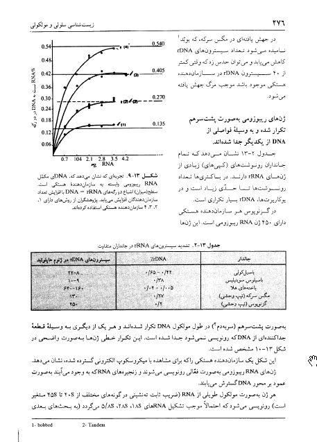 دانلود کتاب زیست شناسی سلولی و مولکولی دکتر مجد و شریعت زاده + نمونه سوالات تستی و امتحانی با جواب + نکات و تست های کنکوری برای آزمون ارشد pdf