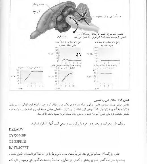 دانلود کتاب روان شناسی فیزیولوژیکی تالیف جیمز کالات ترجمه یحیی سید محمدی زبان فارسی pdf