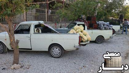 ساماندهی دست فروشان بلوار هفت تیر توسط شهرداری نورآباد