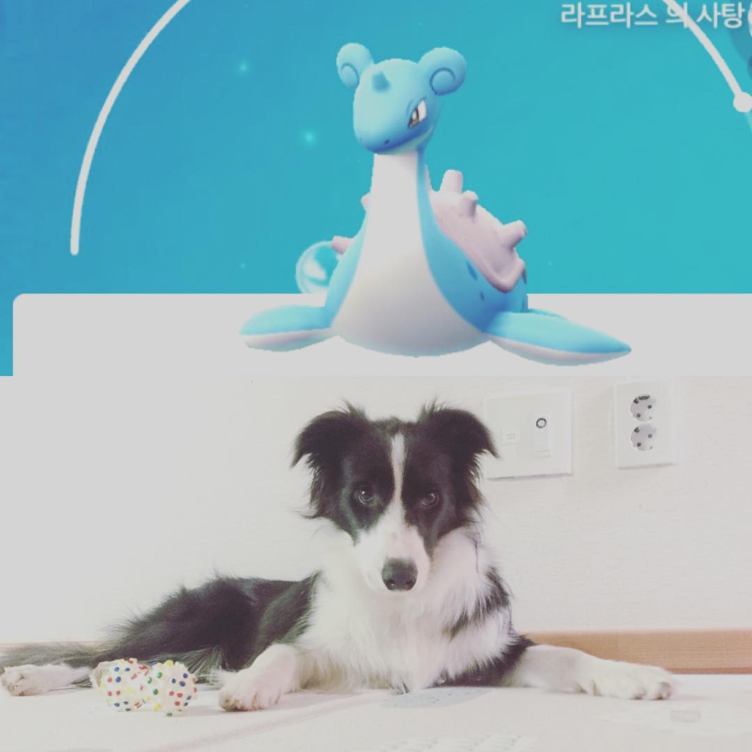[Instagram] seung_kyoya Instagram Update [2017.11.12]