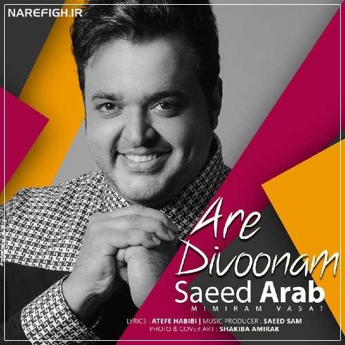 دانلود آهنگ آره دیوونم از سعید عرب با کیفیت 320 و 128