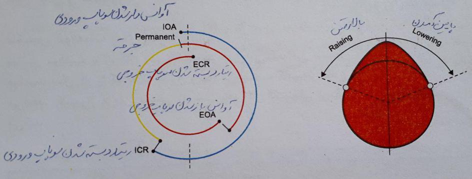 سیستم تغییر زاویه میل بادامک