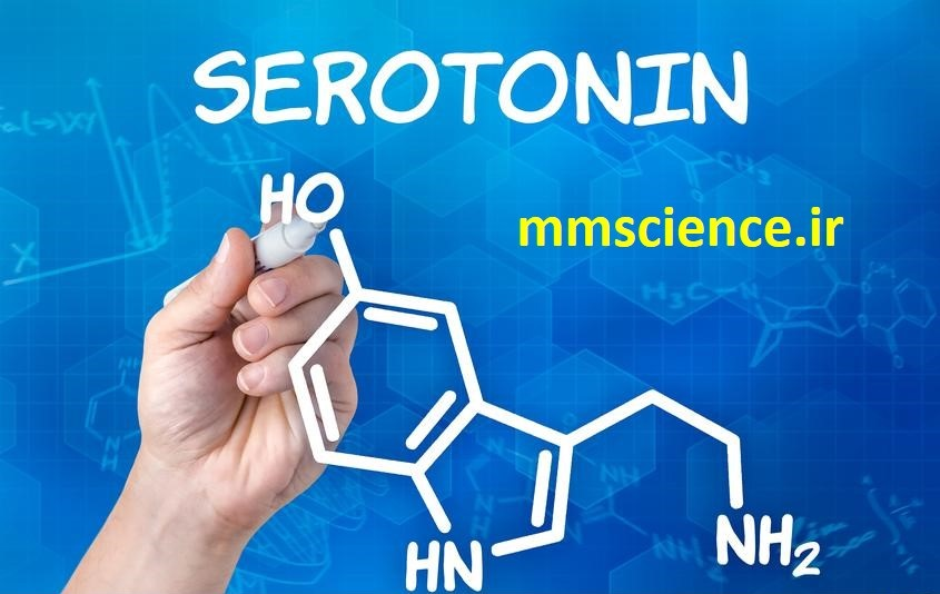 تاثیر هورمون سروتونین