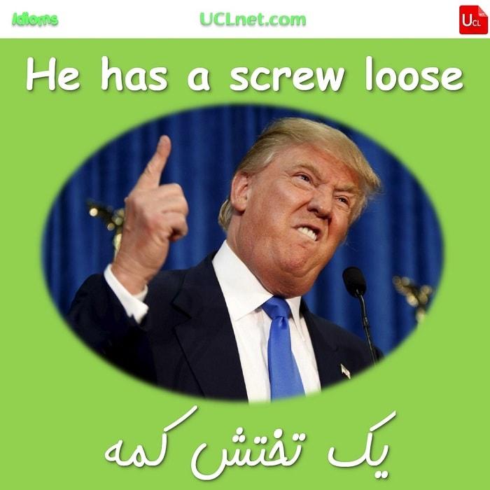 یک تخته کم داشتن – Having a screw loose – اصطلاحات زبان انگلیسی – English Idioms