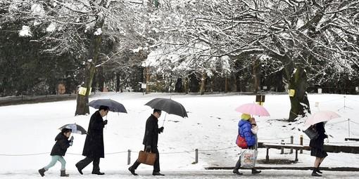 چگونه در هوای سرد و برفی سلامتی و ایمنی خود را حفظ کنیم؟