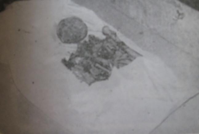 جسد نادرشاه