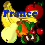 دانلود رایگان بازی رایگان ایرانی آموزشی برای فرانسوی